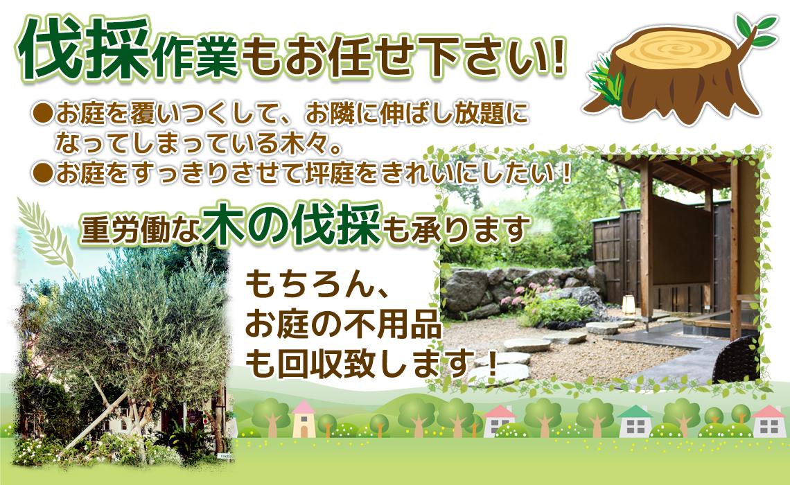 木々の伐採作業もお任せ下さい!
